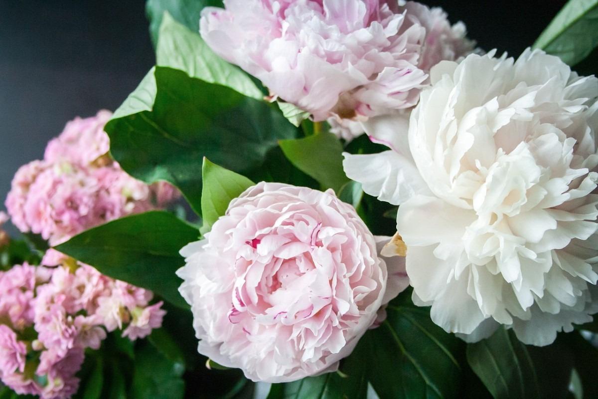 Geurende bloemen bruiloft