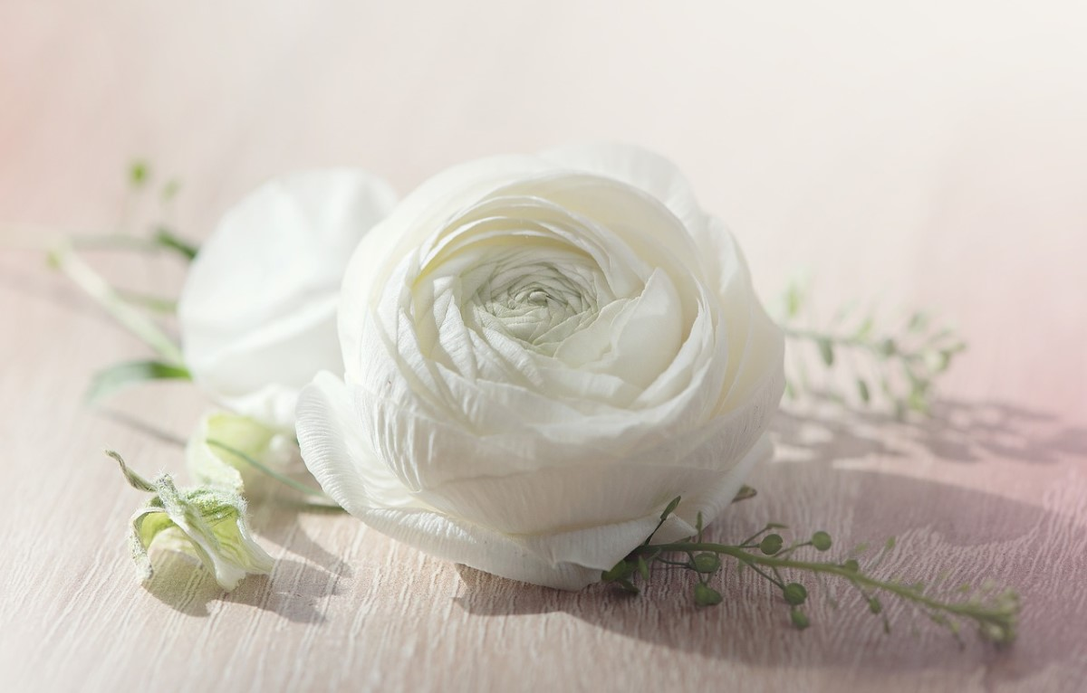 bloemen voor een bruidsboeket