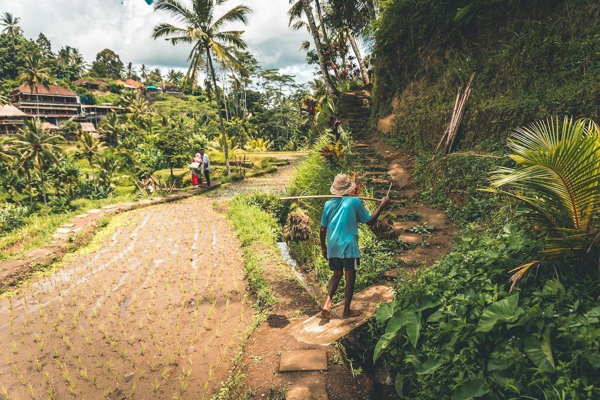 Kortste mensen Indonesië