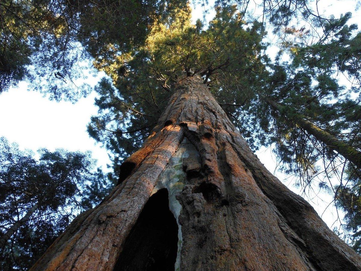 Oudste nationale parken Verenigde Staten